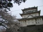 箱根20100403-04⑰