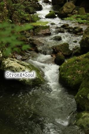 千寿の水2