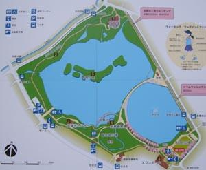 昆陽池map