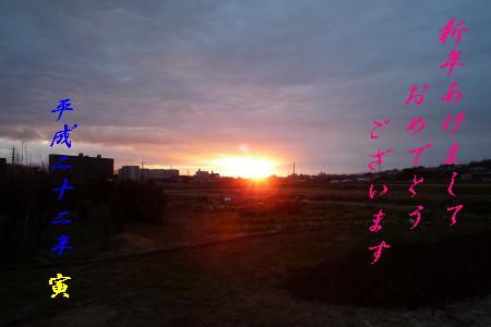 P1000120_1.jpg