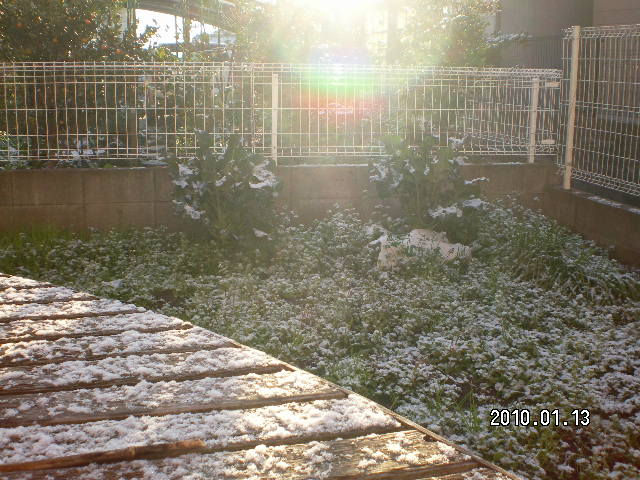 2010_0113_081154-SANY1242.jpg