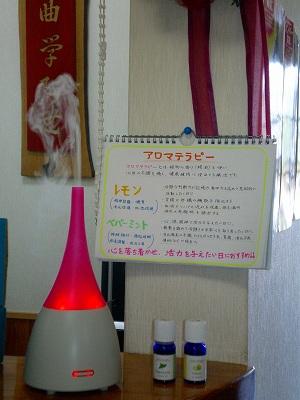 2010_0907_091019-SANY1901.jpg