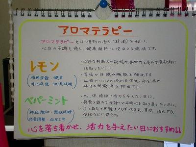 2010_0907_091133-SANY1902.jpg