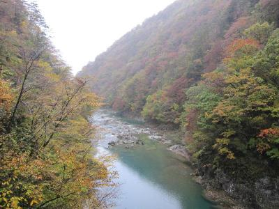 渓谷の紅葉・・・・