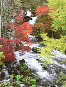 北海道風景写真