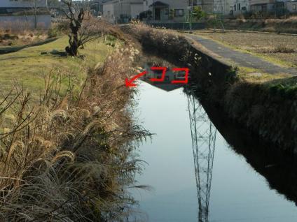 12-02-11-F01.jpg