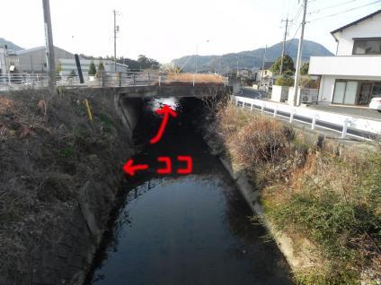 12-02-17-F03.jpg