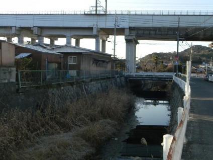 Kawasemi_08.jpg