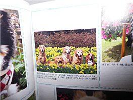 20110326book2.jpg