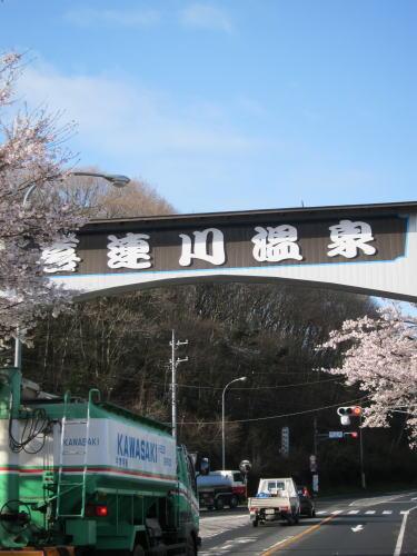 喜連川桜並木2