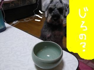 snap_jirokkosan_201014233436.jpg