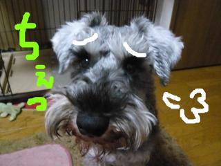 snap_jirokkosan_201014234056.jpg