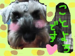 snap_jirokkosan_201015191253.jpg