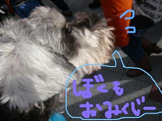 snap_jirokkosan_20101519154.jpg