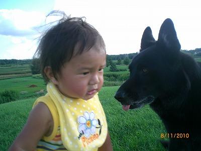 dogpark 011