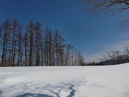 雪面と青い空