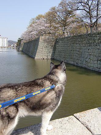 丸亀城のお堀