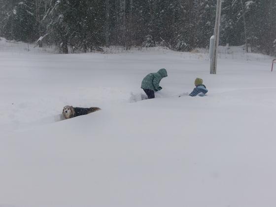 snow012420101