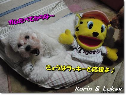 0414花梨&ラッキー