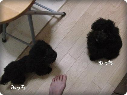 0909ゆ&み