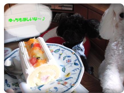 1019ケーキゆっち3