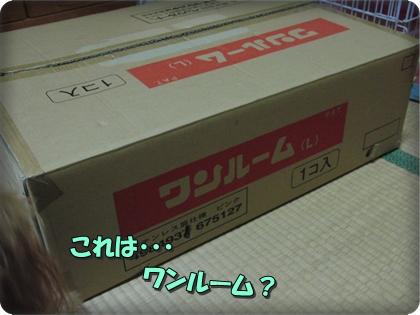 1106箱