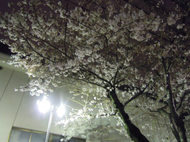 blog用 090