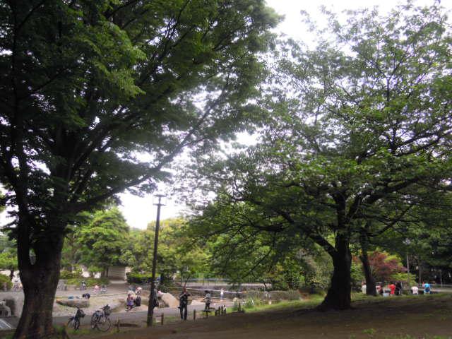 blog 036