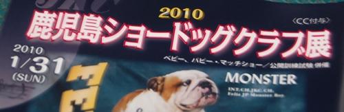 ドッグショーin鹿児島2 001
