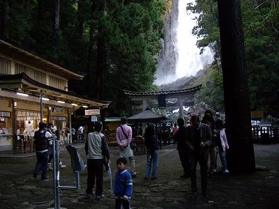 飛瀧神社境内20091114