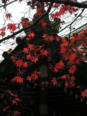 道了尊鐘楼屋根20091121