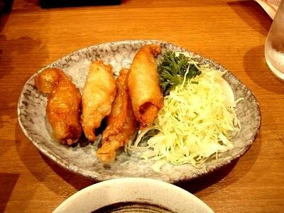 とり皮餃子20091205