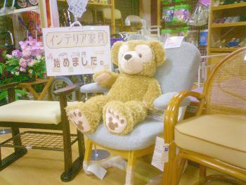 CIMG3891_20111202.jpg