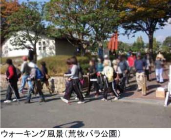 walk001.jpg