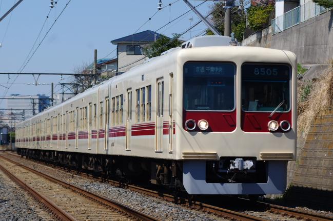2012年3月27日 京成線 タヌキ 検見川