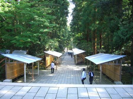 弥彦神社菊まつりの準備中2010-02