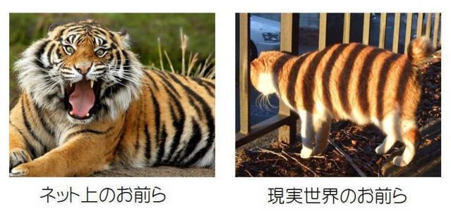 3_20100702163814.jpg