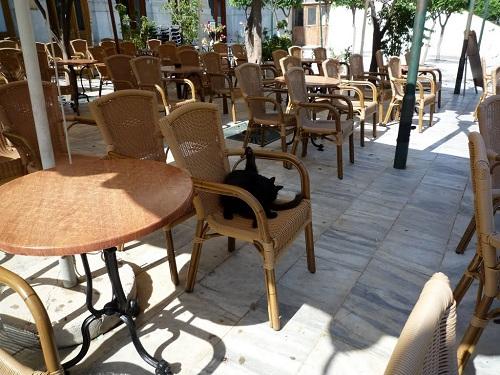 シロス_ミアウリ広場のカフェで (2)