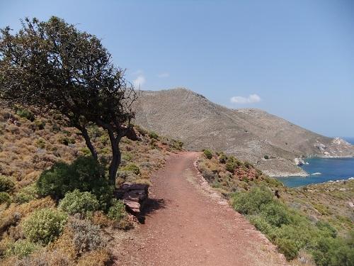 ティロス_レティラへの道 (2)