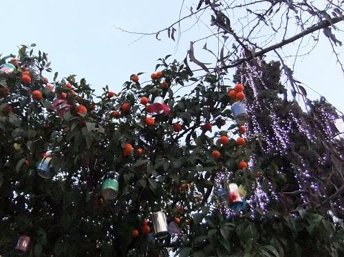 アテネ_シンタグマ広場 (1)
