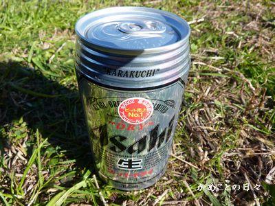 P1090966-beer.jpg