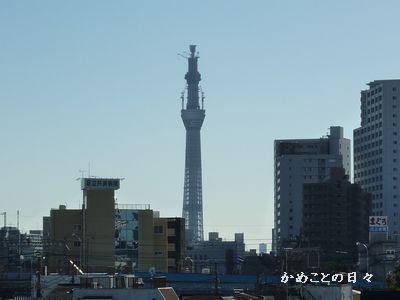 P1090994-sky.jpg