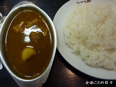 P1100634-curry.jpg