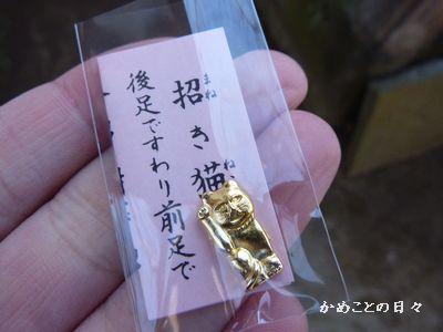 P1110099-kujineko.jpg