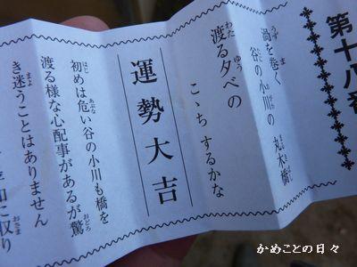 P1110100-daikiti.jpg