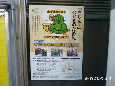 P1110104-poster.jpg
