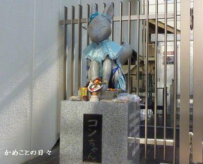 P1110241-kon.jpg