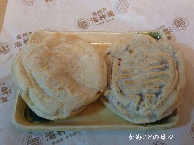 P1110438-kameyaki.jpg