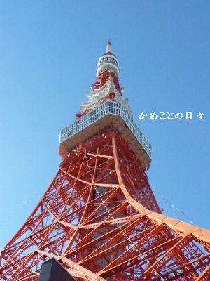 P1120119-towr.jpg