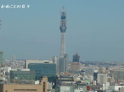 P1120122-sky.jpg